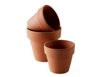 Pot en terre (fleurs)