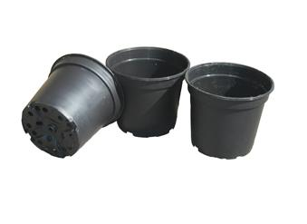 Pot en plastique (fleurs)