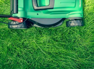Comment éviter un trajet à la déchèterie en réutilisant ses déchets verts ?