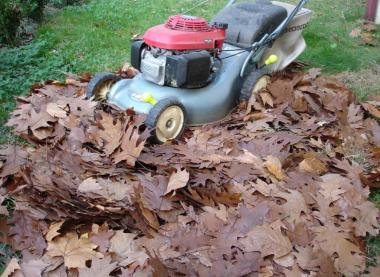Entretenir son compost en automne